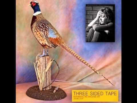Lil Ugly Mane - Three Sided Tape Volume Two
