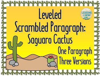 three types writing skills