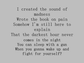 From This Song Shinedown S Sound Of Madness I Took The Lyric