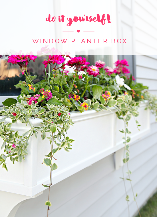 19 Do It Yourself Window Planter Box Window Planters Window