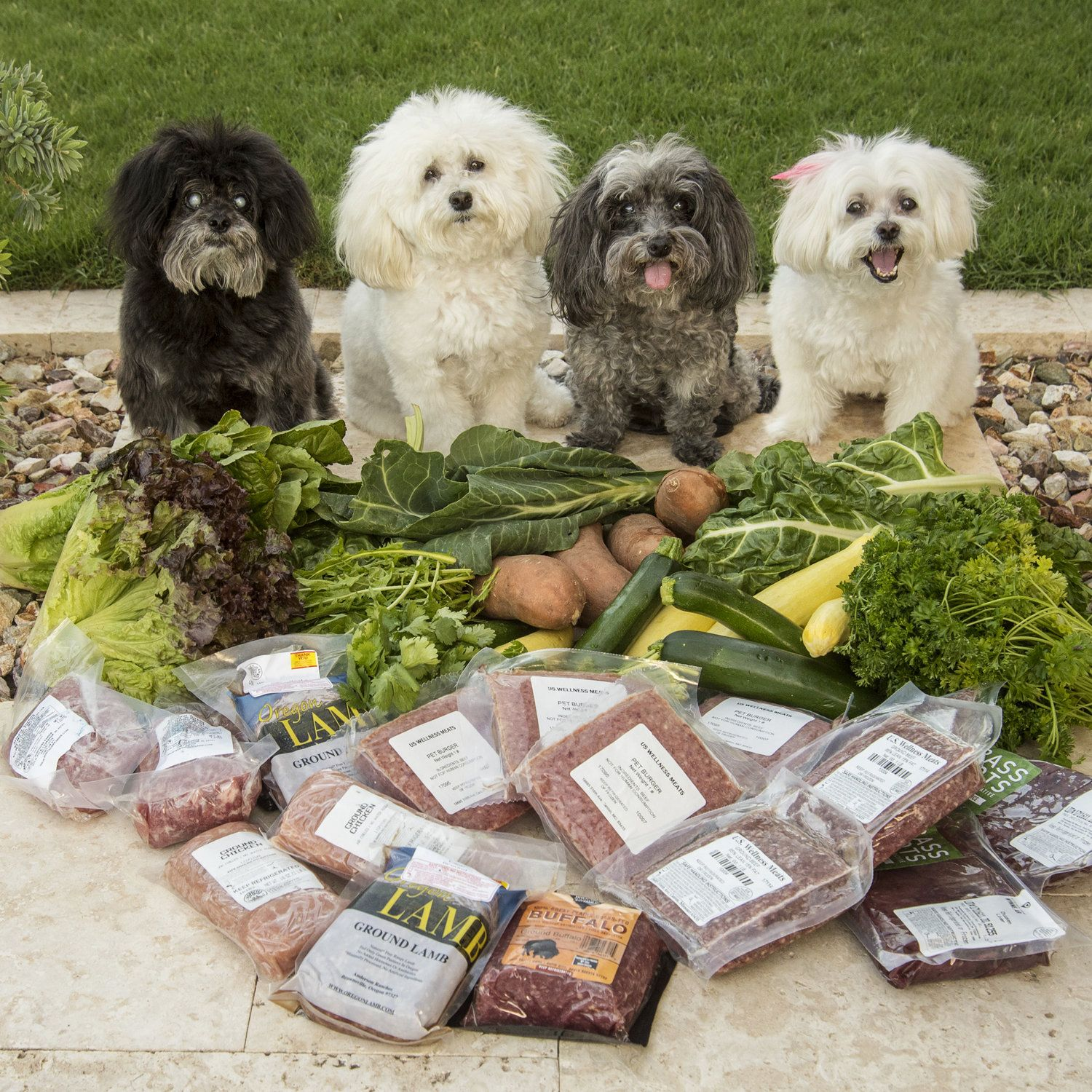 Eatlikethepbjpack Doggy Animals Organic Vegetables