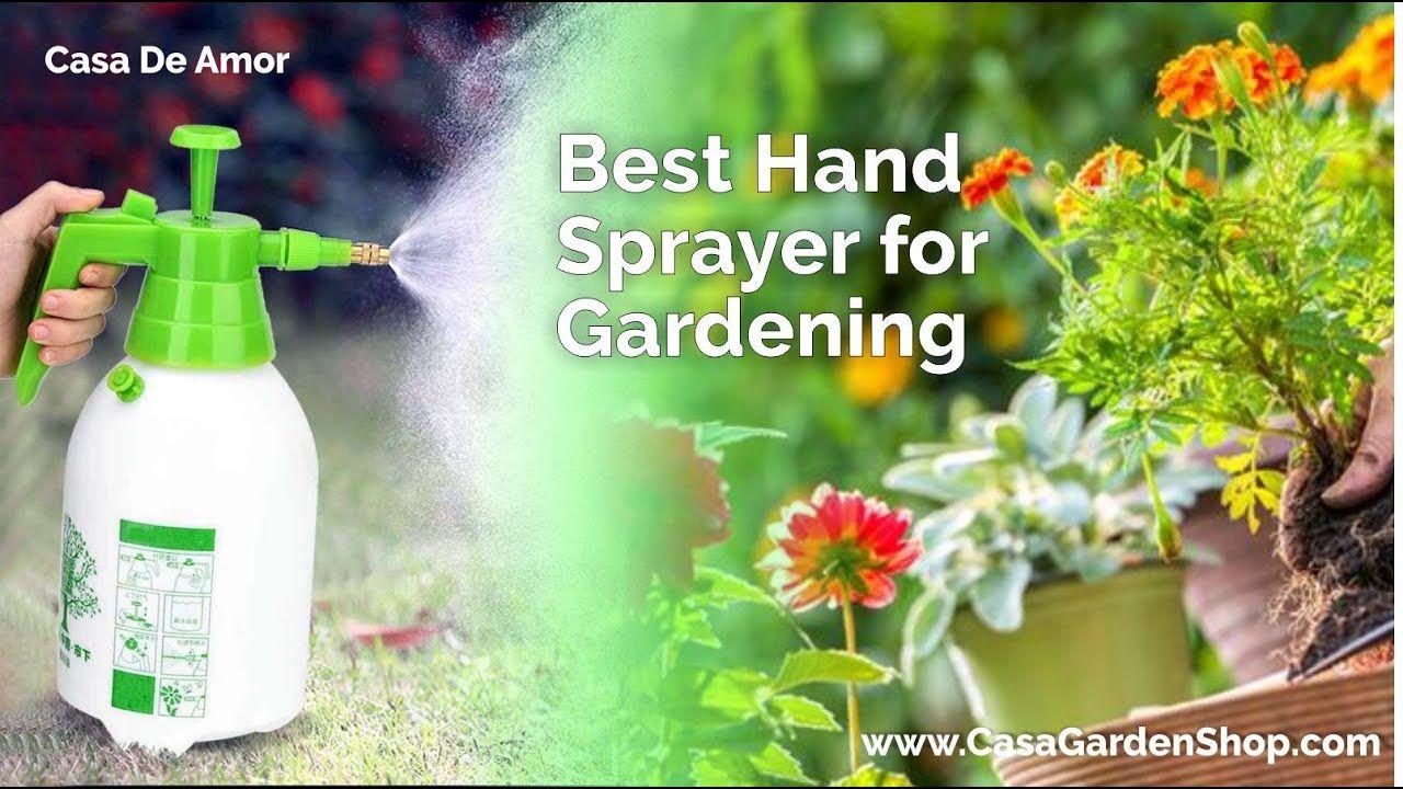 d92ca8651fe089f0539713c7a064870c - Expert Gardener Weed And Feed Liquid