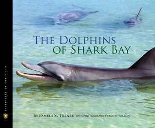 The Dolphins of Shark Bay by Pamela S. Turner.  The Scientists in the Field is an excellent nonfiction series. In this book, the author explores dolphin behavior and socialization. The book is engaging and fun, written in a personable, narrative style, but it is also very detailed and in-depth. I was fascinated, and I am sure middle school animal lovers will be, too.
