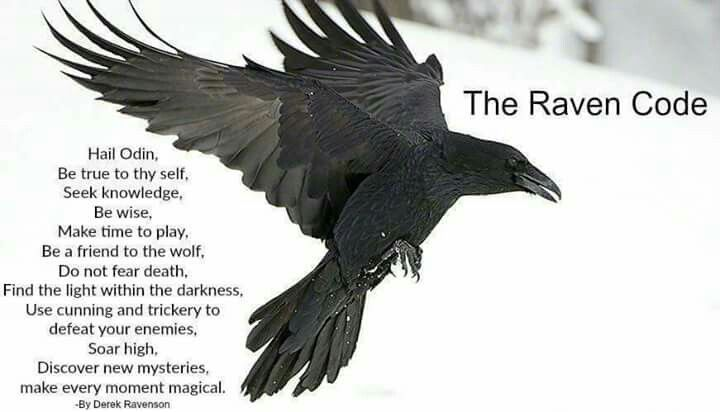 Pin By Odin On The Gods Raven Tattoo Vikings Crow