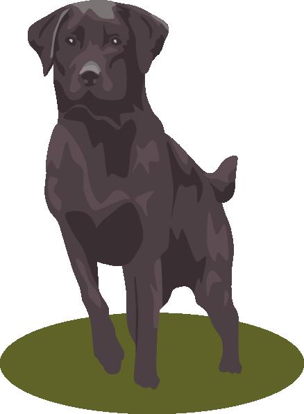 Black Lab Dog Clip Art Labrador Black Labs Dogs