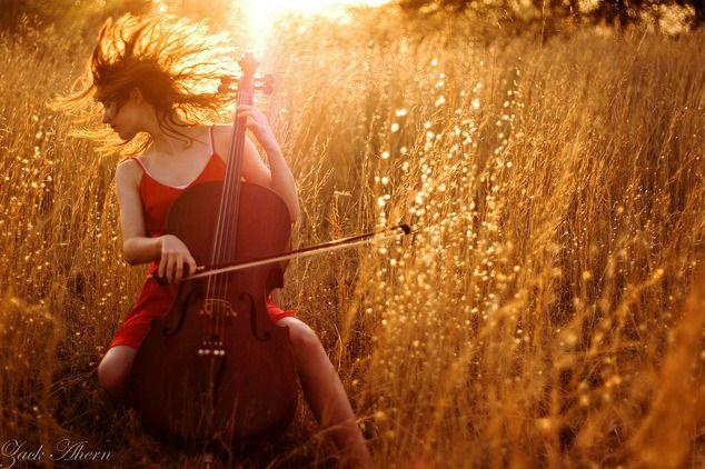 A Sunny Sonata