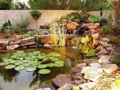 Como decorar un estanque voda v zahrade pinterest Estanque natural como hacerlo