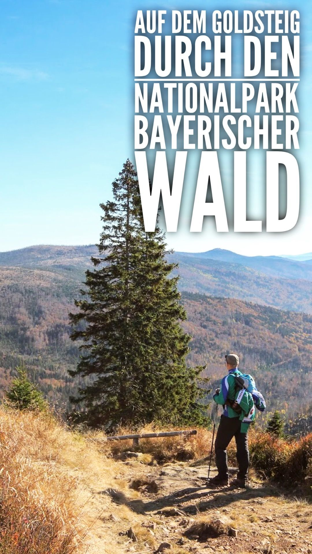 Goldsteig wandern Nationalpark Bayerischer Wald Rachel Lusen BMA #naturallandmarks