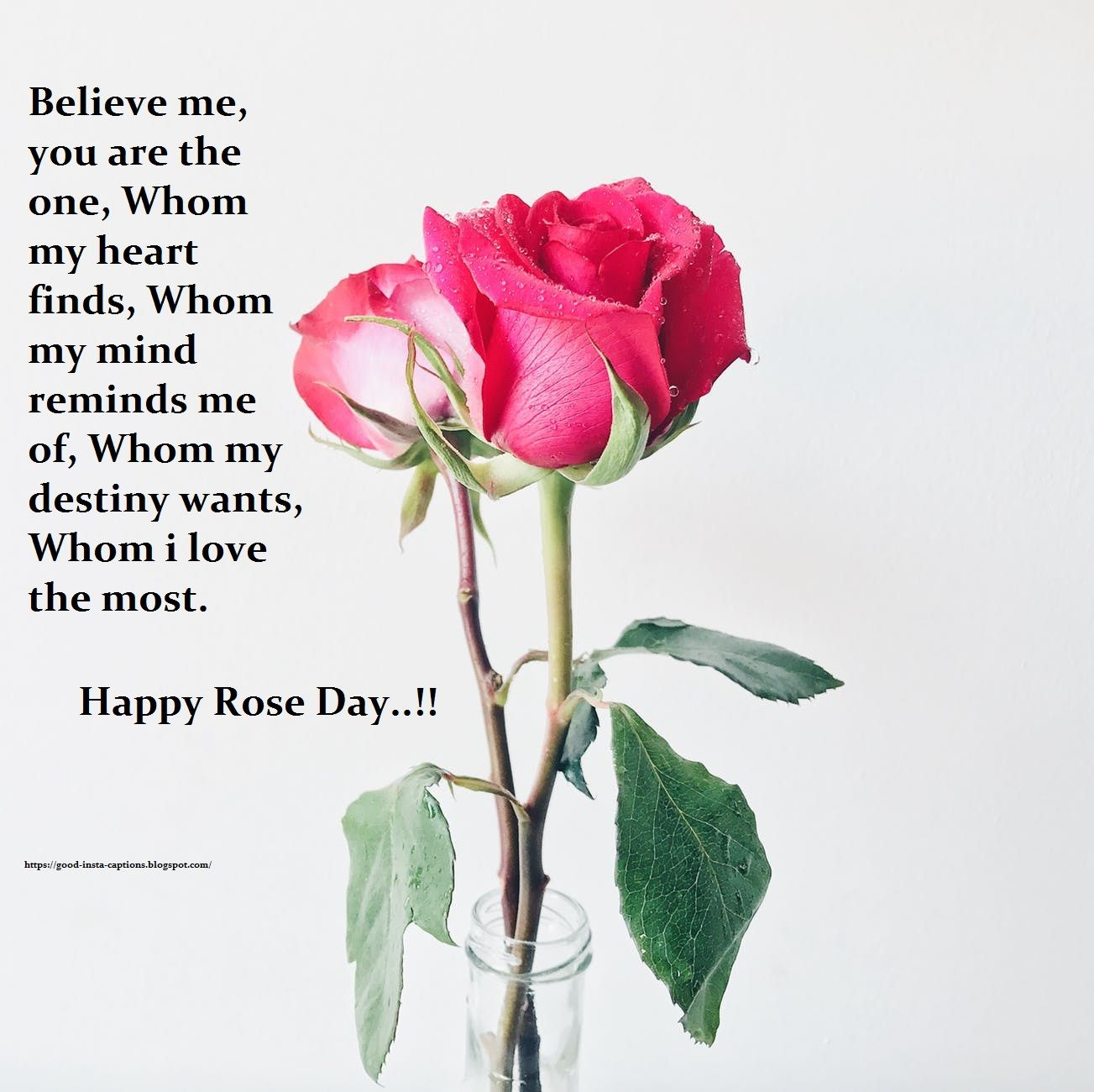 Happy Rose Day Image For Girlfriend Happy Rose Day Happy Rose Day Wallpaper Rose Day Images