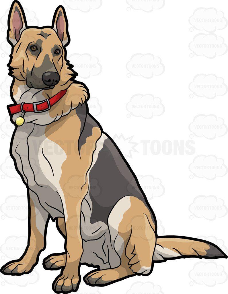 A German Shepherd Pet Dog Cartoon Dog Dog Drawing Cartoon