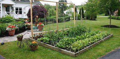 Integrar un huerto en el jardin jardin pinterest for Preparar el huerto en invierno
