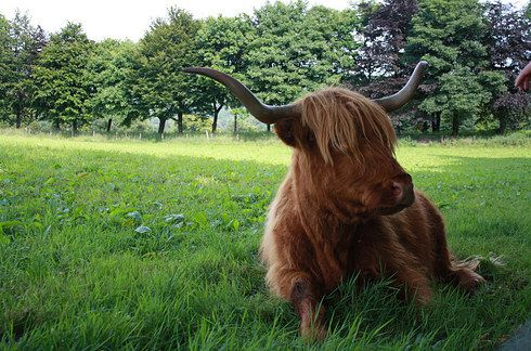 14 Life-Changing Walks Everyone Must Take In Scotland