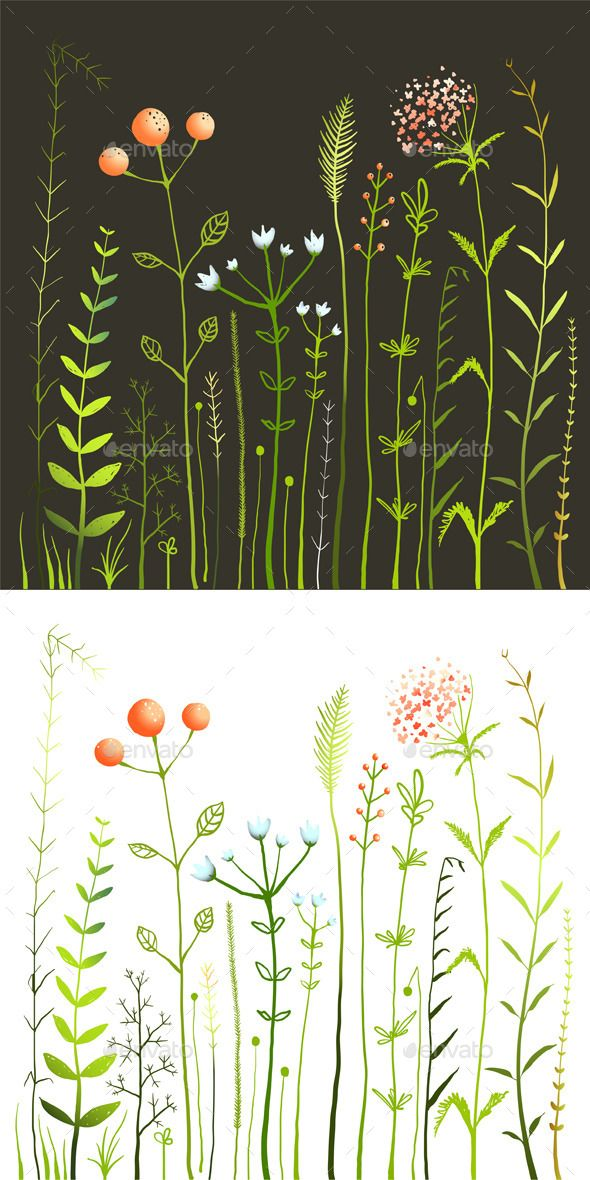 Wild Flowers and Grass Field Collection