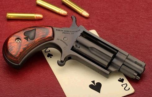 NAA BLACK JACK REVOLVER, 22 MAG | Firearms | Hand guns, Guns