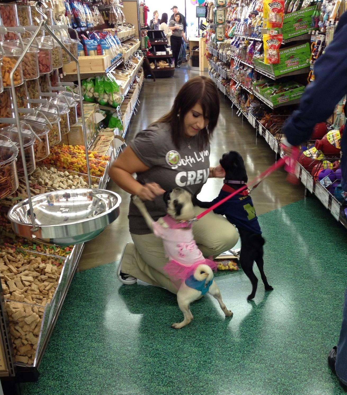 Retail Wrap Pet Supplies Plus Burlington Costco Open Houston