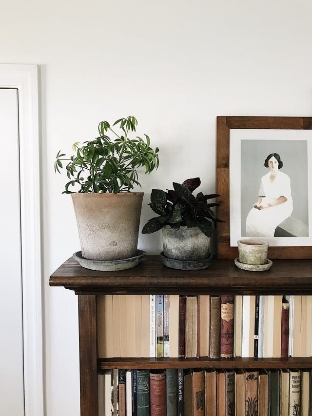 Everyone Loves to Hate the Backwards Books Trend—Do You?   Apartment ...
