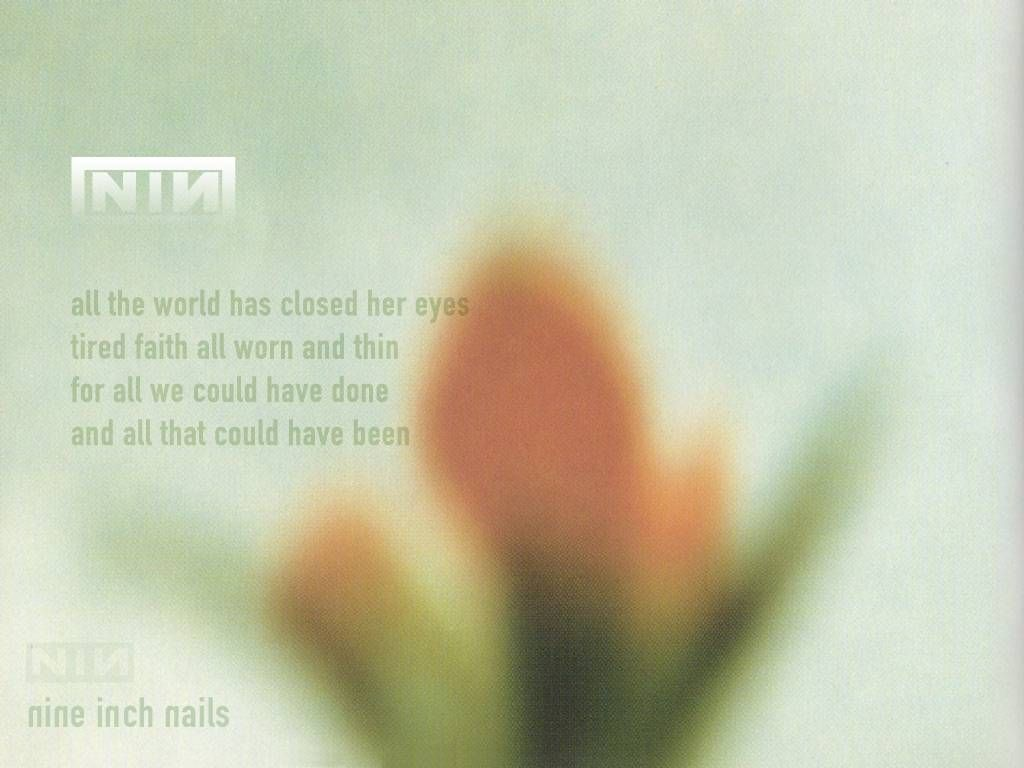 And all that could have been | Nine Inch Nails | Pinterest