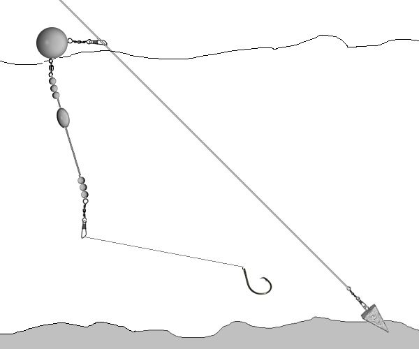 Balloon rig for leopard shark fishing google search for Shark rigs for surf fishing