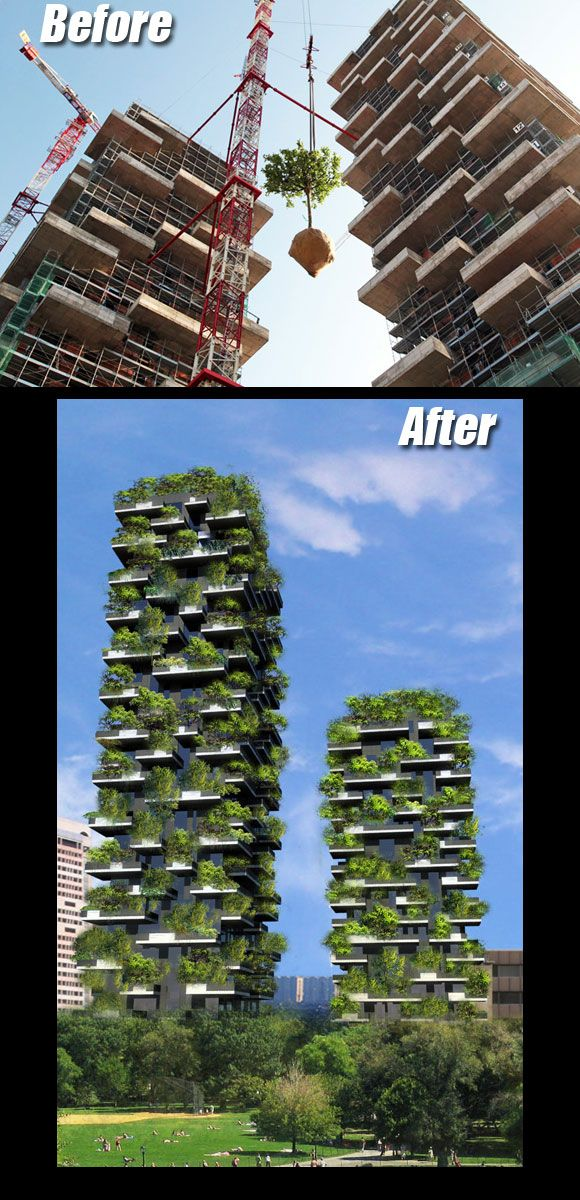 Photo of 11 Stunning Green Roofs So Cool They May Turn Rush Limbaugh Into a Tree Hugger