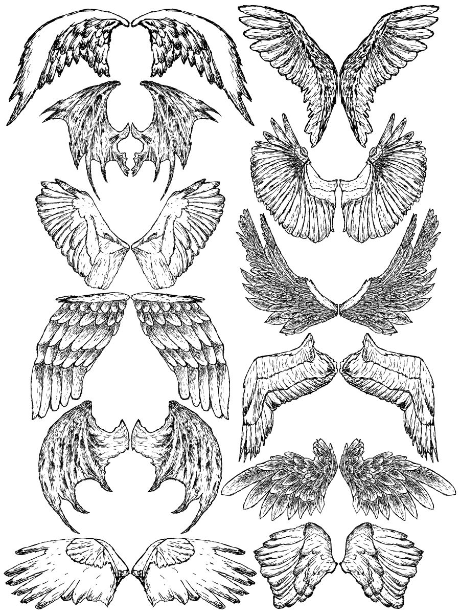 Hand Drawn Wings Vector and Brush Pack04 How