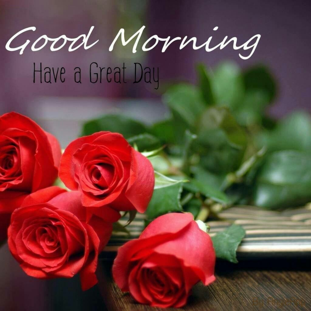 Good Morning Beautiful Hope You Re Having A Wonderful Morning Me Well I M In Bed Feeling Meh Today Good Morning Flowers Good Morning Images Good Morning