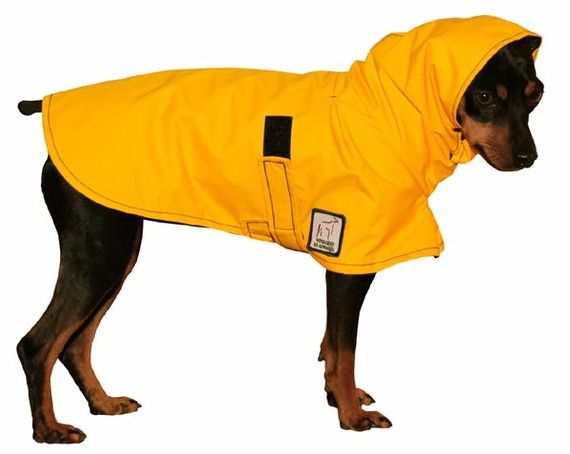 Snuggy Hoods Outdoor Dog Rug Dog Rug with Tummy Coverage Keep Clean /& Dry