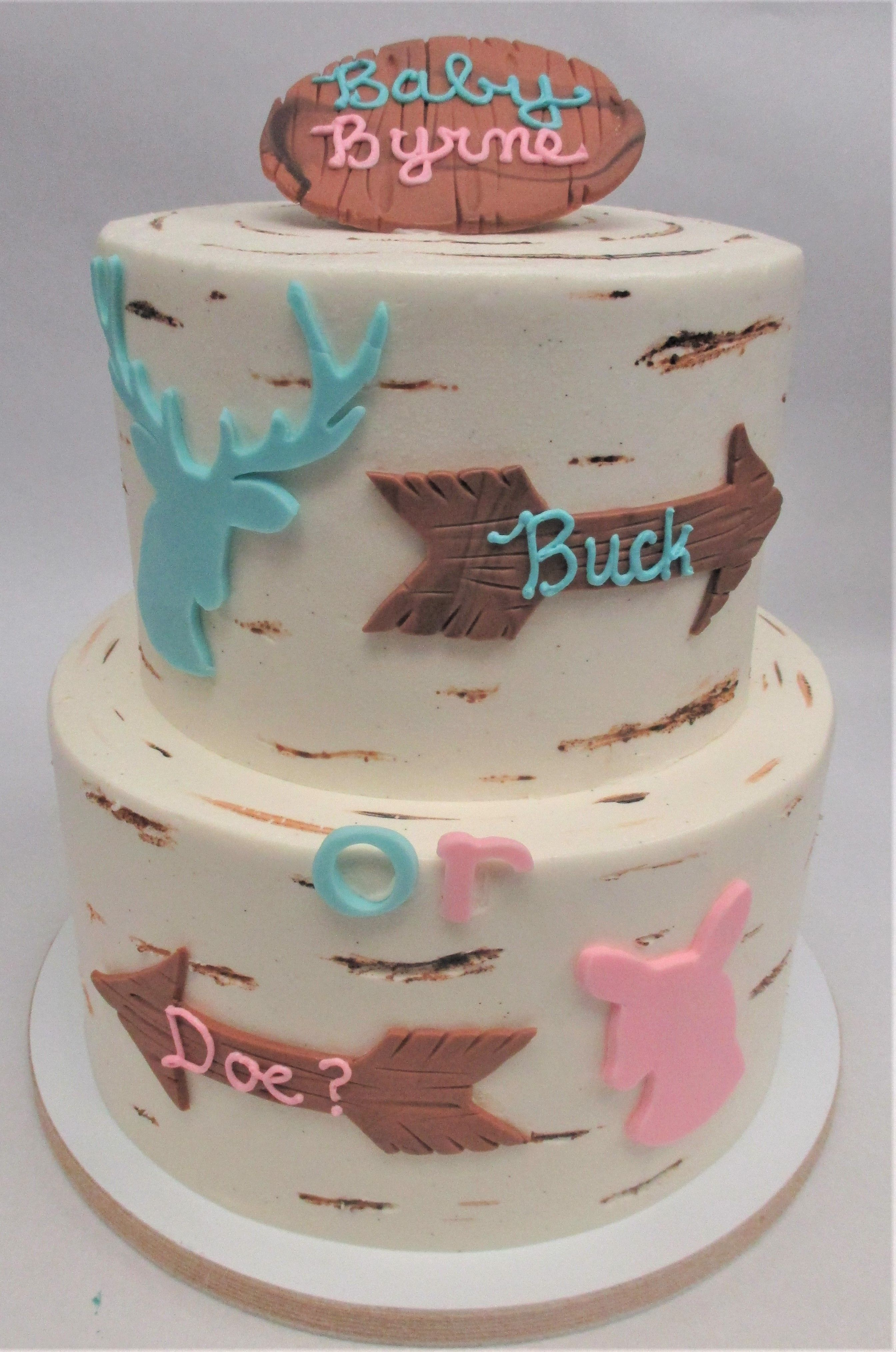 Buck or Doe gender reveal 2 tier cake by Flavor Cupcakery