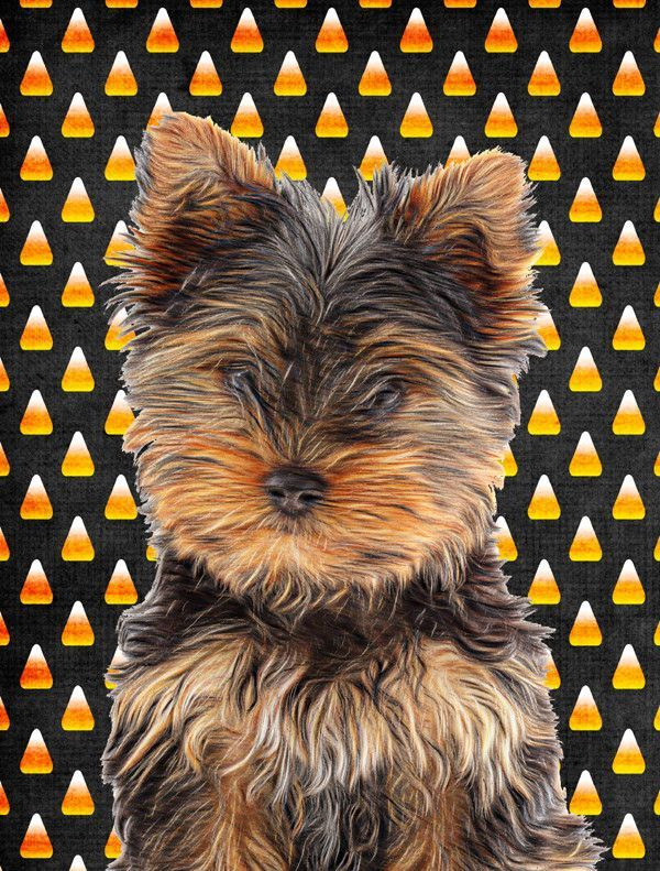 Lovely Candy Corn Halloween Yorkie Puppy/Yorkshire Terrier 2 Sided Garden Flag