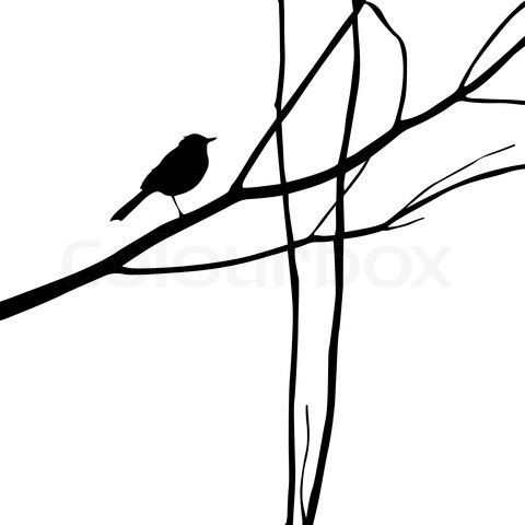 Silhouette - Bird on wood branch. Easy to paint directly on wall.
