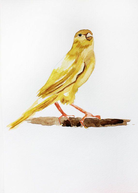 Original Watercolor Painting Canary Bird Yellow By Maryartstudio