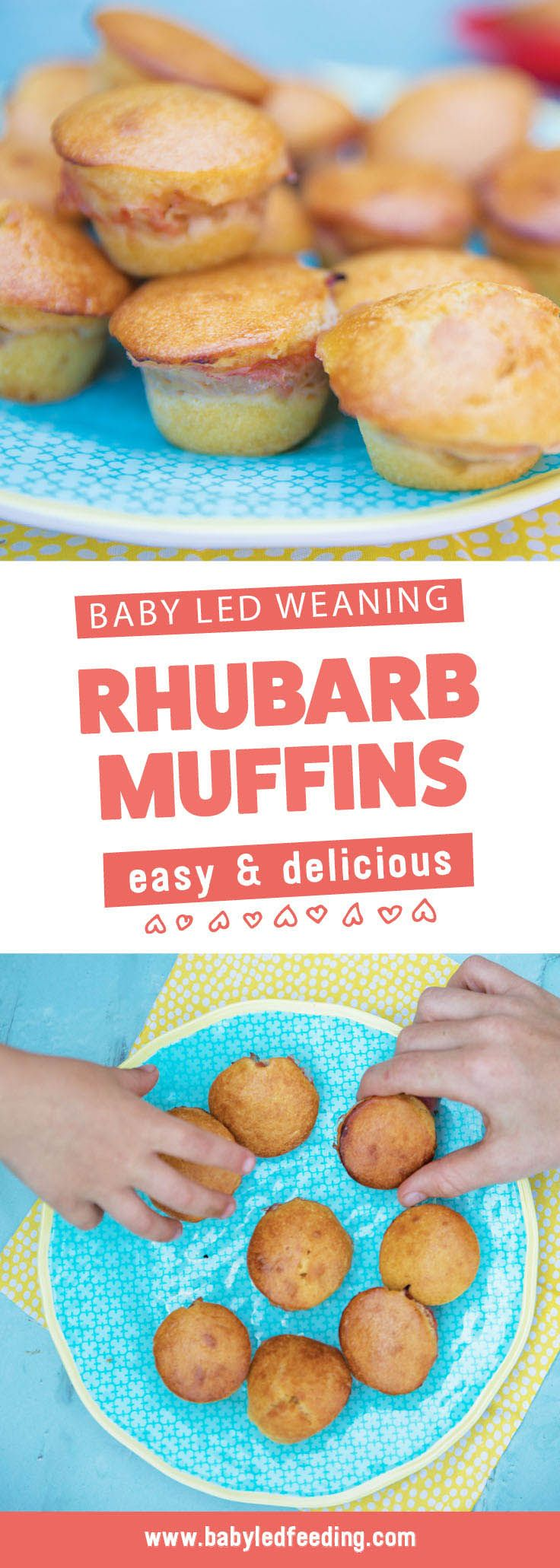 Rhubarb Baby Led Weaning Muffins Recipe Briose Baby