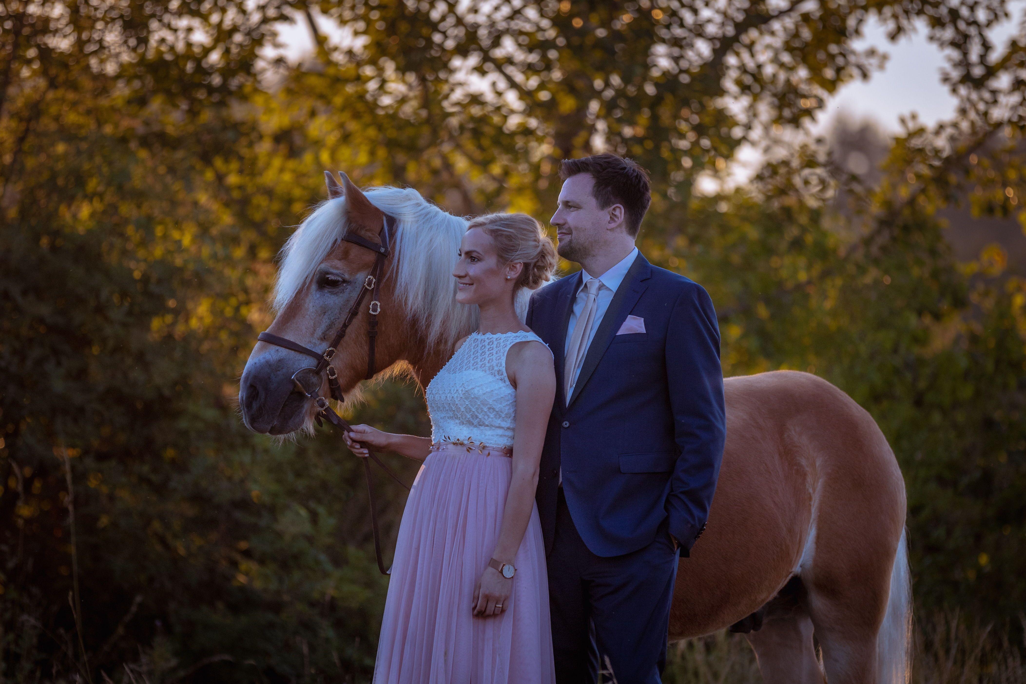 Hochzeitsshooting Mit Pferd Pferde Fotografie Tierfotografie Pferdefotografie