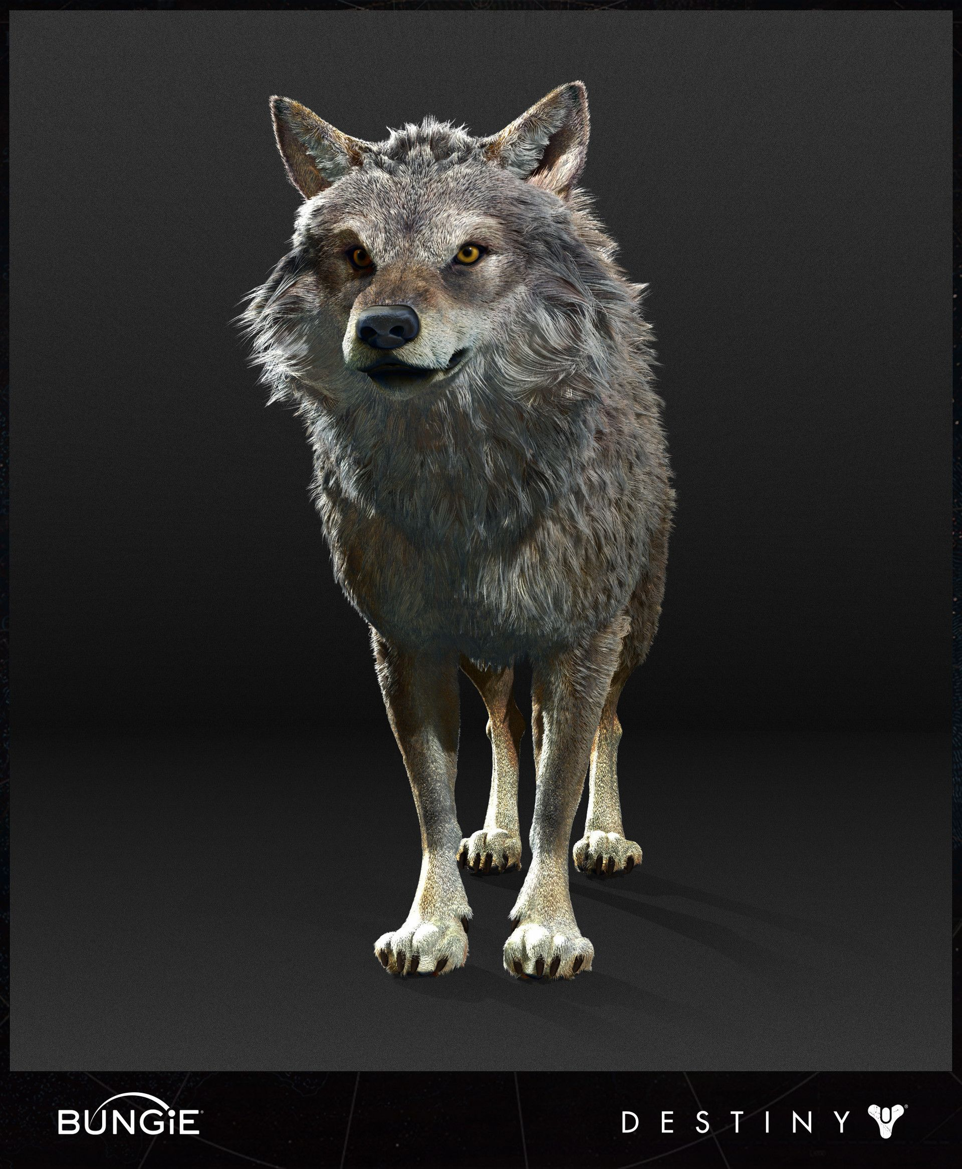 ArtStation - Destiny - Rise of Iron - Wolf High Poly, Ian ...