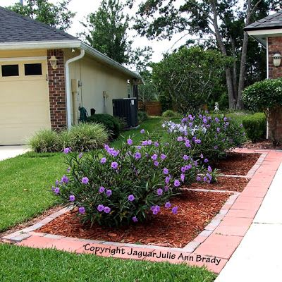 Front House Landscaping Low Maintenance