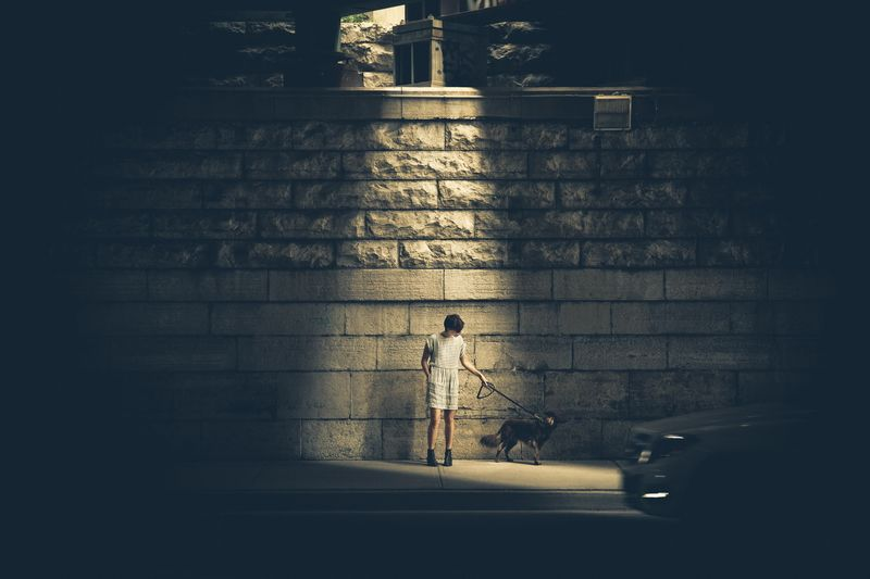 Canvas Prints Stretched Framed Fine Art Giclee Artwork For Wall Decor Dog Sidewalk Light Street Night
