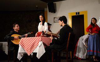 Portugal, Lisboa - jantar com show de fado