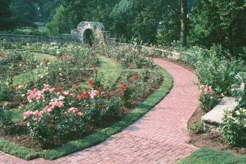 Rose Garden Via Ritter Park Garden Rose Garden Outdoor