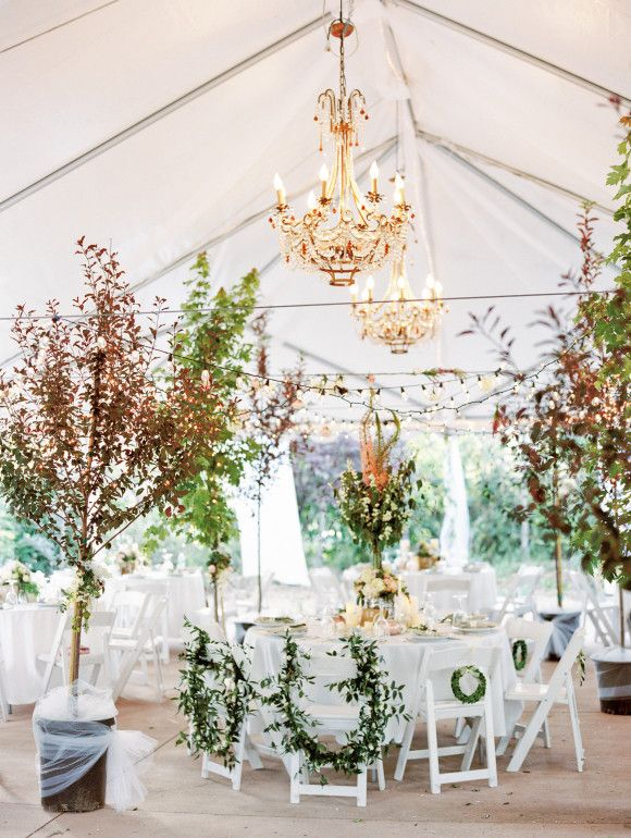 fall reception with trees and gold chandeliers