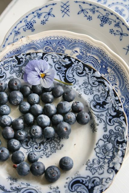 Blue Transferware is a popular favorite.  Vibeke kept pulling out these two plates for photos, and it is easy to see why. ~ Mary Walds Place - VIBEKE DESIGN