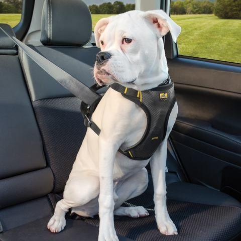Impact Dog Car Harness Dog Car Dog Harness Dog Safety