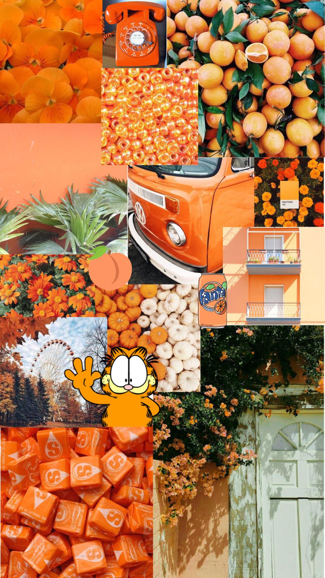 orange aesthetic background Aesthetic wallpapers, Orange