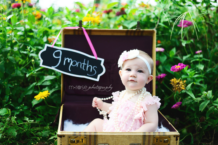 Baby girl. 9 month photo shoot