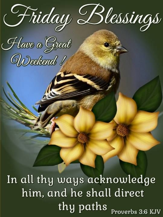 scripture friday blessings kjv