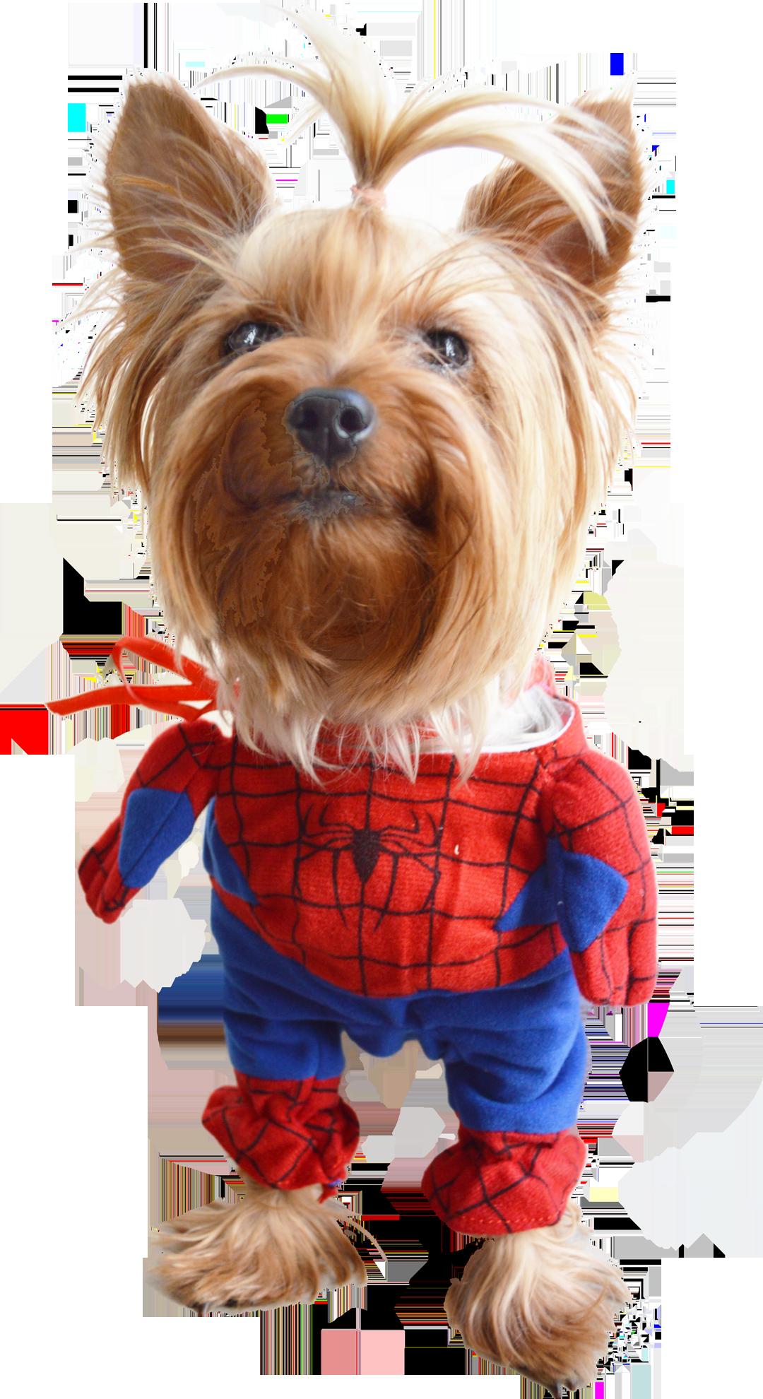 York Z Kita W Stroju Spiderman Spiderdog Teddy Bear Tigger Teddy