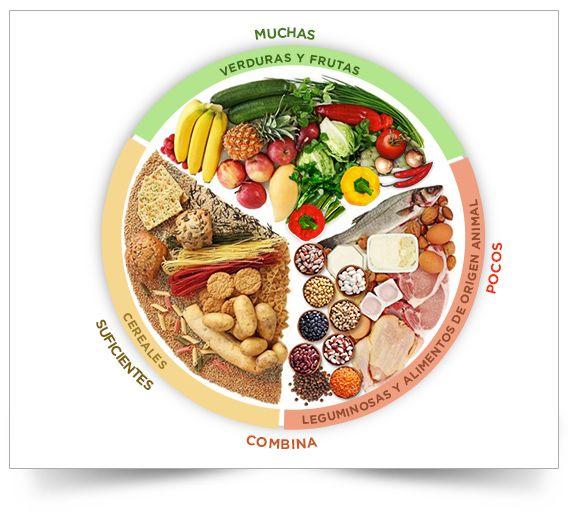 Plato del bien comer   Recetas saludables   Pinterest