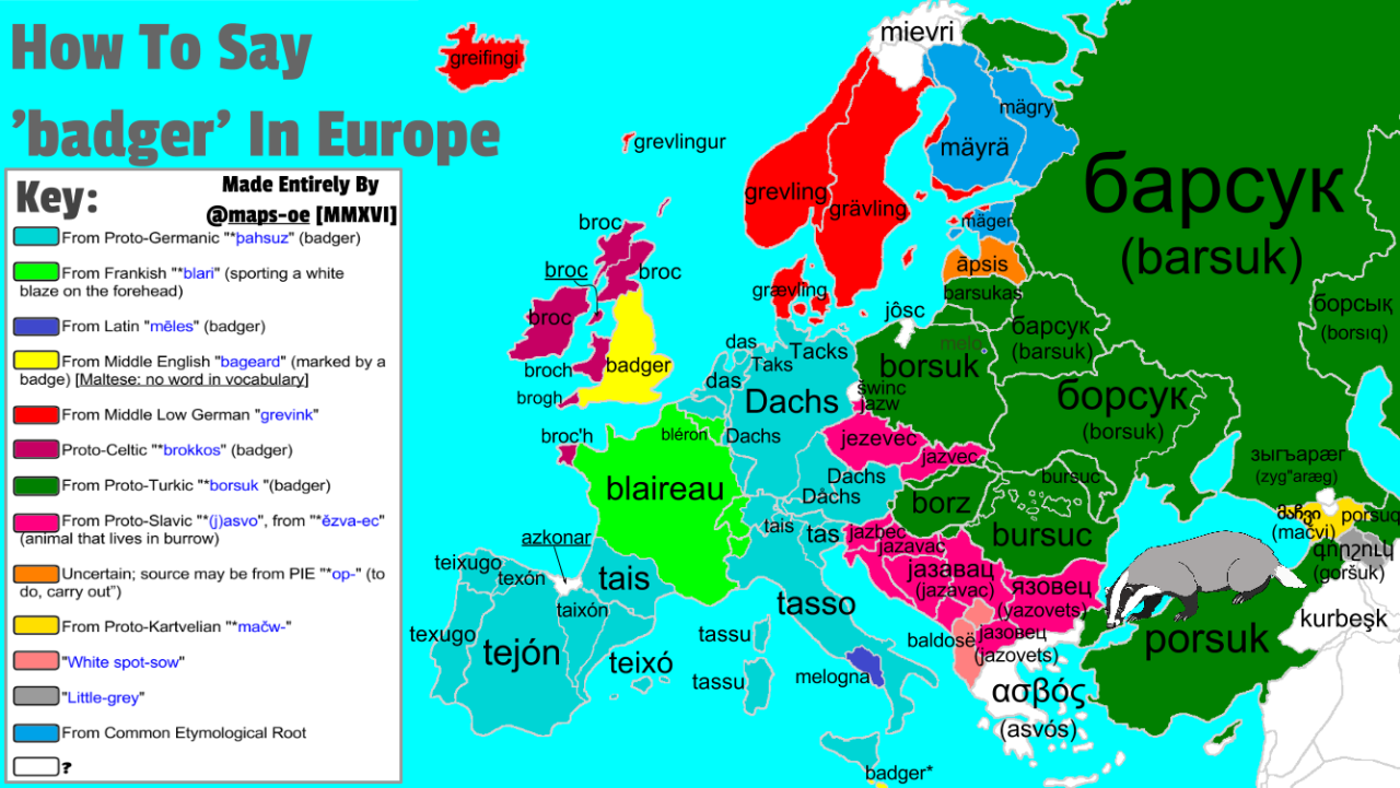 How To Say badger In Europe With Etymology Ethnography Pinterest