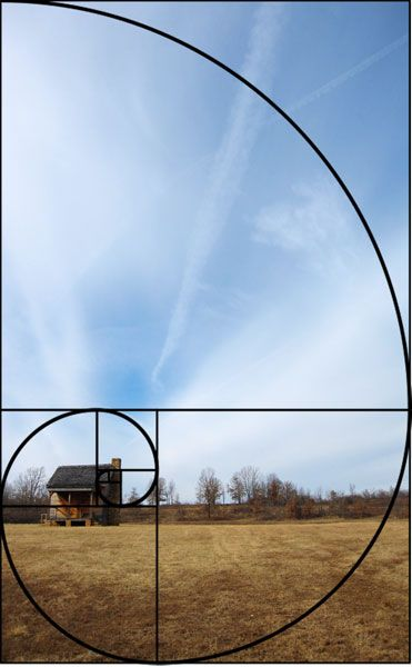 The Golden Ratio Or Fibonacci Spiral With Images Composition