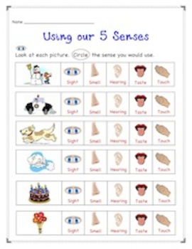 math worksheet : 1000 images about 5 senses on pinterest  5 senses preschool  : 5 Senses Kindergarten Worksheets