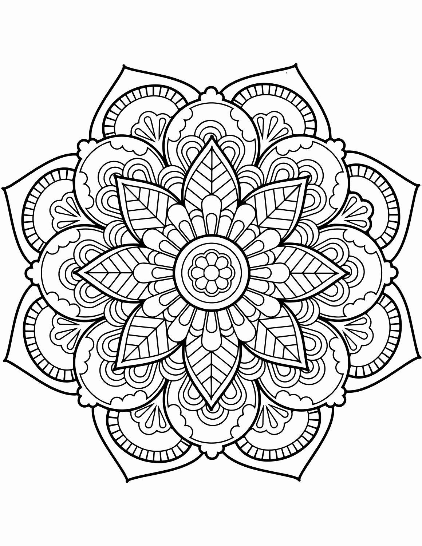 Coloring Book Flowers Printable Grafika Mandala Rajzok