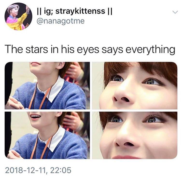 Stray Kids memes